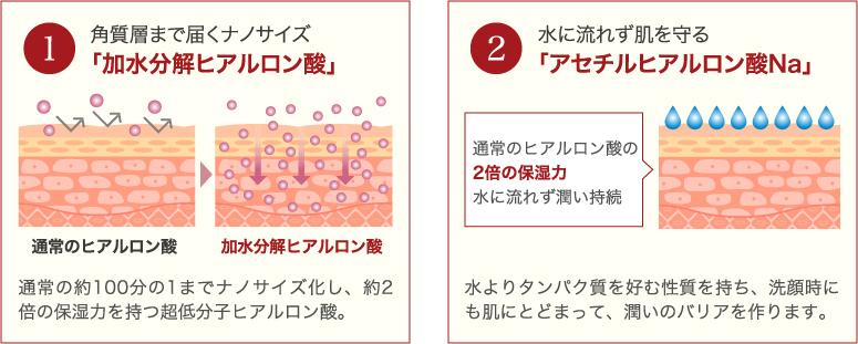 1.角質層まで届くナノサイズ「加水分解ヒアルロン酸」。2.水に流れず肌を守る「アセチルヒアルロン酸Na」